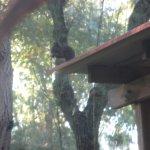 Photo of Camping Baia del Marinaio