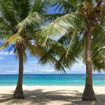 Malapascua Exotic Island Dive & Beach Resort Foto