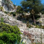 Photo of Le Jardin exotique d'Eze