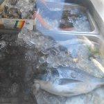 poisson frais