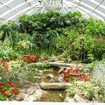 Another beautiful garden