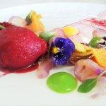 Red cabbage & blood orange cured Stone Bass,lemon,Saffron & dill panna cotta