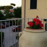 Photo of Hotel Verdesolemare