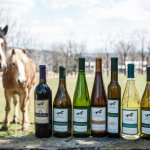 The wines (and the horses).