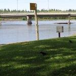 Ese es el puente de calle Río Negro al fondo y se llega a la Isla 32 y con el paseo al otro puen