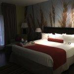 Photo de Hotel Indigo Ottawa Downtown