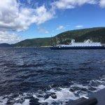 Photo de Excursions en Mer Baie de Tadoussac Day Tours