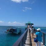 很美的海上陸橋