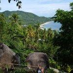 Photo de Monkey Flower Villas