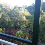 Foto de Eumundi Rise Bed & Breakfast