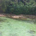 Photo de Lagoa Verde, Ilha Grande
