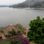 Birdnest at Bunyonyi Resort Foto