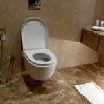 Foto de Radisson Blu Hotel New Delhi Dwarka