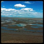 The tide is out at Lydd On Sea