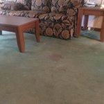 Hickory Knob State Park Lodge Photo