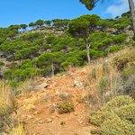 Foto de Ruta del Pico Mijas