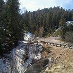 Photo de Mt. Lemmon Scenic Byway