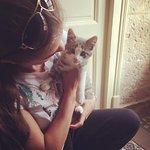 The kitten!!!