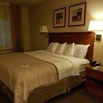 Foto de Candlewood Suites Fort Stockton
