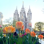 Photo de Temple Square