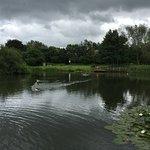 Sugar Mill Ponds Rawcliffe Bridge