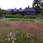 The Summer garden with pond