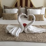 Lovebirds made by the Staff (King Size Bed)