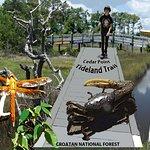 Tideland National Recreation Trail