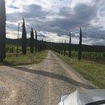 Foto di I Grandi di Toscana