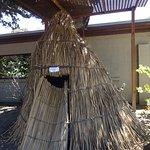 Coyote Hills Regional Park Foto