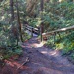 Foto de Edworthy Park & Douglas Fir Trail
