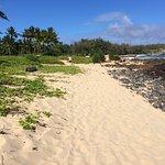 Photo of Grand Hyatt Kauai Resort & Spa