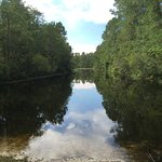 MarshWalk Foto