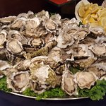 Lots of raw oysters