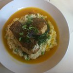 Local Golden Tile Fish with Sweet Pea Risotto