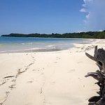 Beach outside boundary