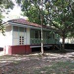 Temple Tree at Bon Ton Foto