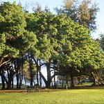 Photo of Kamaole Beach Park 3