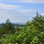 Blick zum Chiemsee