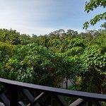 Sepilok Forest Edge Resort ภาพถ่าย