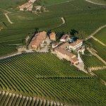 nel cuore del vigneto Cerequio - nestled in the heart of Cerequio single vineyard