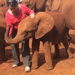 Baby Ndotto... How can you not adopt an Ellie and support this wonderful org