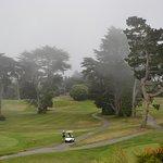 Поля для гольфа в тумане.