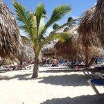Foto de Punta Cana Princess All Suites Resort & Spa