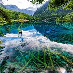 Jiuzhaigou Natural Reserve Foto