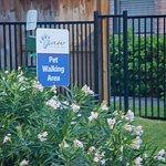 Foto de Candlewood Suites - Houston Park Row
