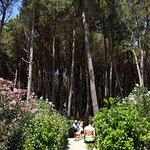 Rocca Nettuno Garden Foto