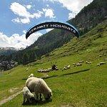 Paragliding Zermatt Holidays