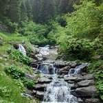 In den Bergen oberhalb von Schenna