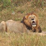 KET safaris! Amazing trip